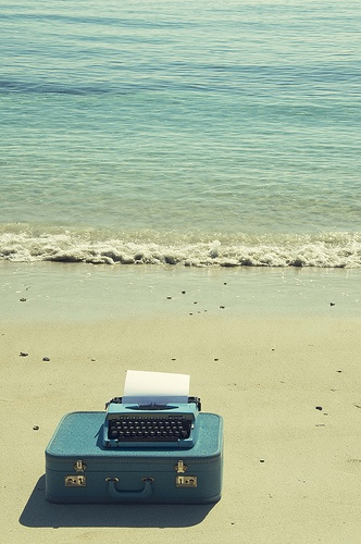 beach type